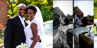 Meadowlark Gardens Wedding-Virginia-Rodney Bailey Photographer--8