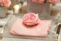 3-9-14 A CAPITAL BRIDAL AFFAIR_Rodney Bailey Wedding Photography DC_ MAYFLOWER HOTEL DC Wedding_0022A