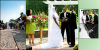 Meadowlark Gardens Wedding-Virginia-Rodney Bailey Photographer--6