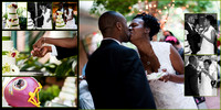 Meadowlark Gardens Wedding-Virginia-Rodney Bailey Photographer--14