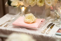 3-9-14 A CAPITAL BRIDAL AFFAIR_Rodney Bailey Wedding Photography DC_ MAYFLOWER HOTEL DC Wedding_0023A