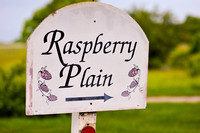 Raspberry Plain Wedding Photographer_Leesburg Virginia