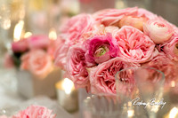 3-9-14 A CAPITAL BRIDAL AFFAIR_Rodney Bailey Wedding Photography DC_ MAYFLOWER HOTEL DC Wedding_0019A