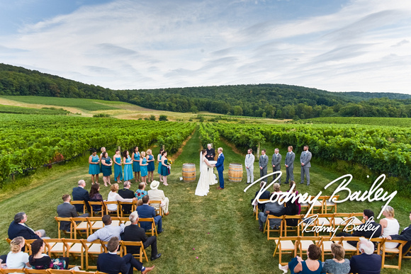 Photojournalism by rodney bailey breaux vineyards weddings