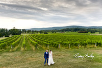 Breaux-Vineyards-VA-weddings-Winery-Wedding-Virginia-wedding-Photographers-Rodney-Bailey0011